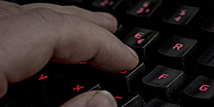 Trump's Terrifying Online Brigades
