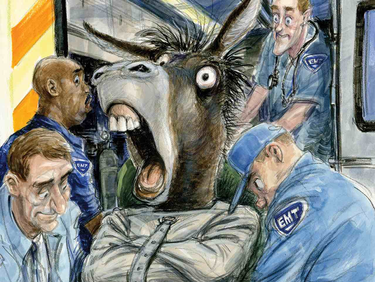 Democrats Go Wild